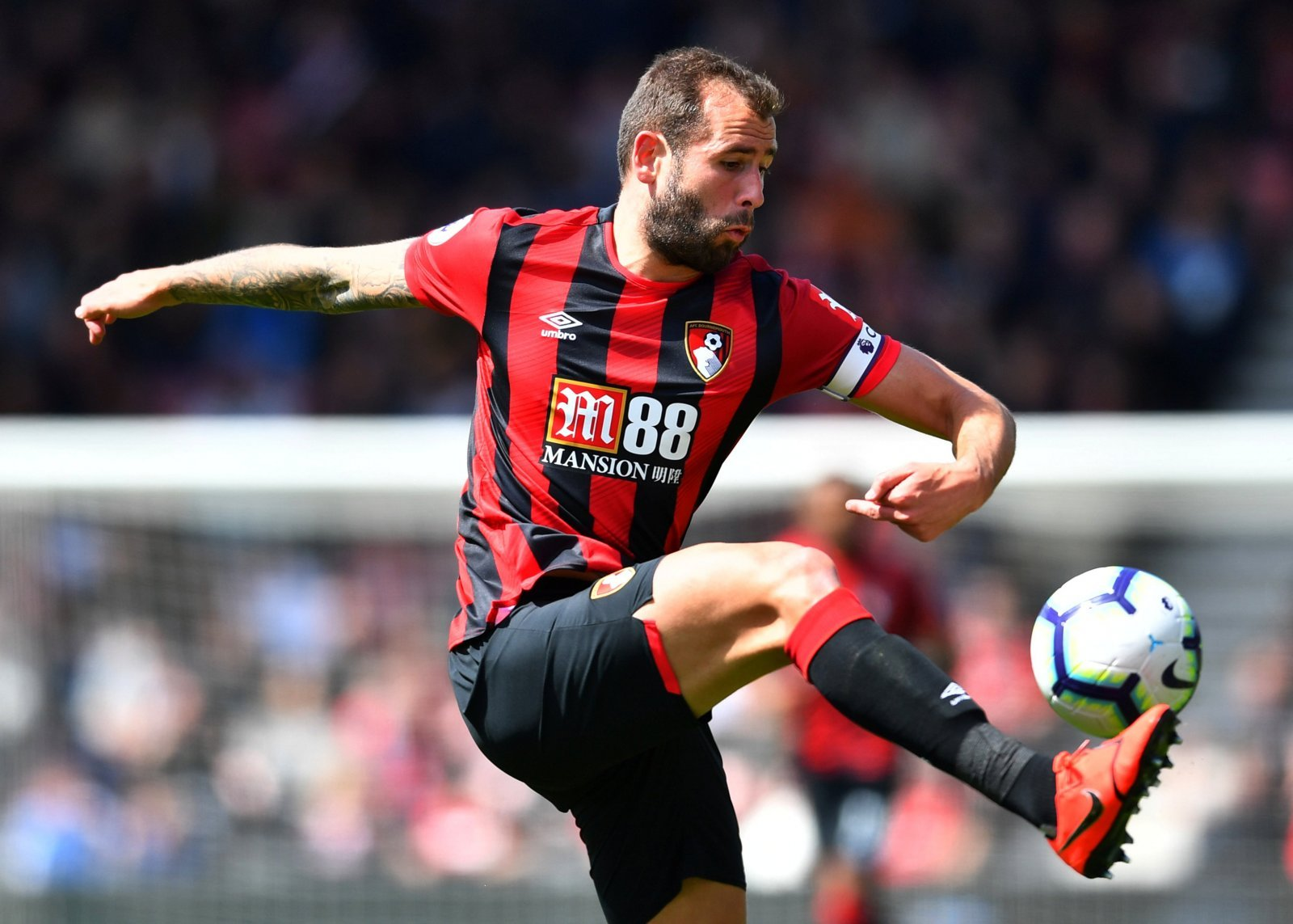 Captain Cook wants Howe to stay | Vital Bournemouth